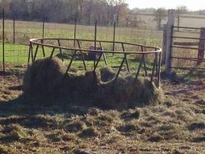 bull hay ring